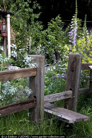 Native planting in a cottage garden with a stile over the fence