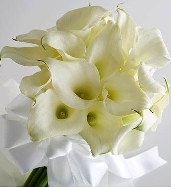 Calla Wedding Boquet