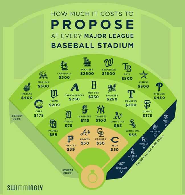 How Much It Costs to Propose at Every Major League Baseball Stadium via Swimmingly | Blog.theknot.com