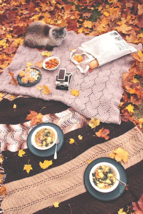 Simply autumn — its-pumpkin-season: Simply Autumn~