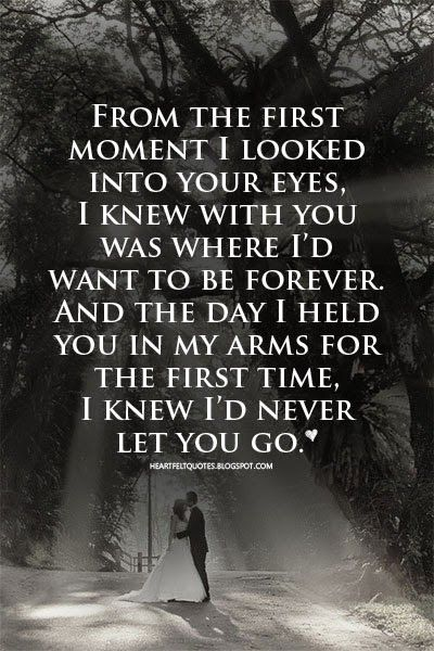 I Want To Hold You Forever Quotes Ssmatters