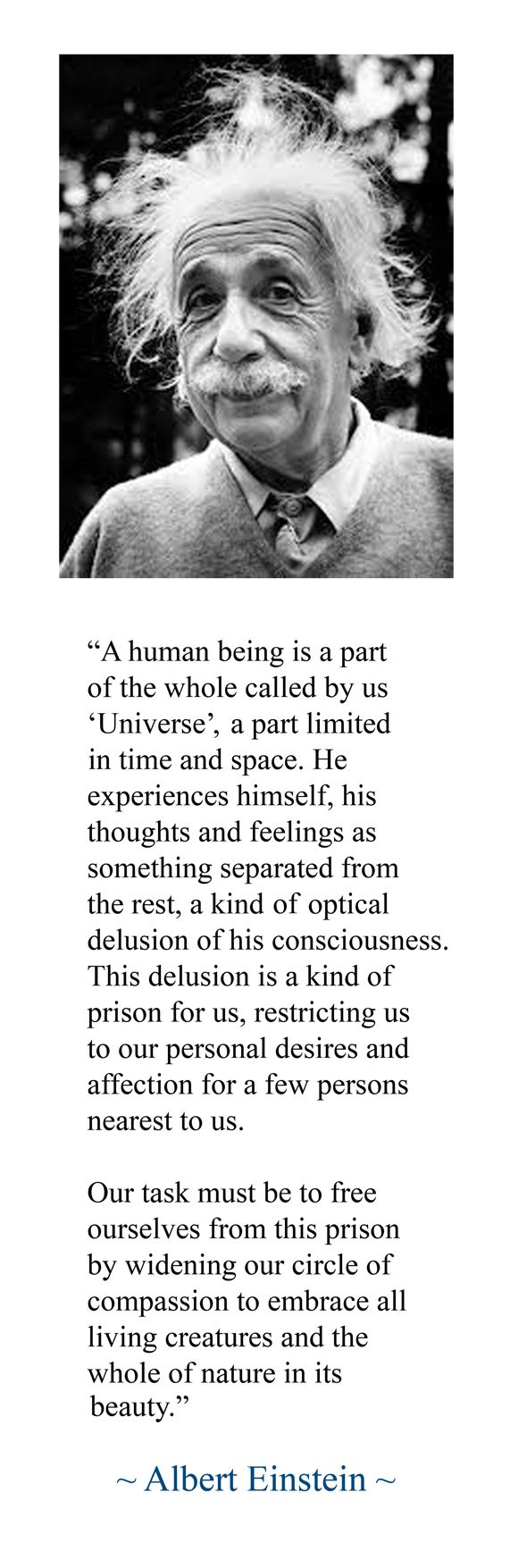 Einstein, Compassion, Reality, Perspective:
