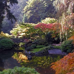 1000+ images about Japanse tuin ideeen on Pinterest  Gardens ...
