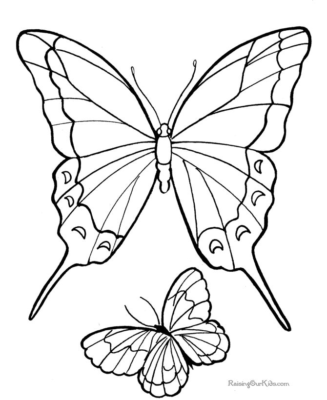 coloring book pages to print | Free Butterfly picture to print and color