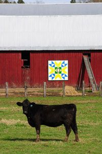 """Mason County Quilt Trail: """"We put a quilt block on my family's barn on Route 35 in 2004,"""" Yauger said. """"In 2008, we put up five quilt blocks on Mason County barns. In 2009, we completed six more. Now in 2010, we have the next 10 barns selected, plus a waiting list for more."""" Every Quilt and every barn has a history. Download the Mason County Quilt Trail here: http://www.wvcommerce.org/app_media/assets/doc/newsandinfo/trails_map.pdf"""