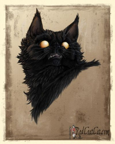 petsmart cat feeder