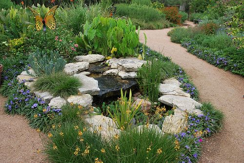 17 best images about drought tolerant plants ideas on for Xeriscape garden designs