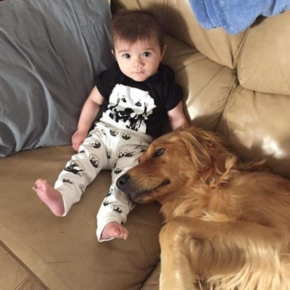 When your bestie is Golden Retriever! Thanks to Mommy for sharing the photo!   You can find our Golden Retriever onesies and organic cotton baby leggings in our Etsy shop, link in bio.    #monofaces