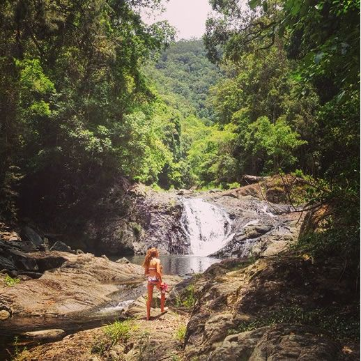 sunshine coast waterfalls artists