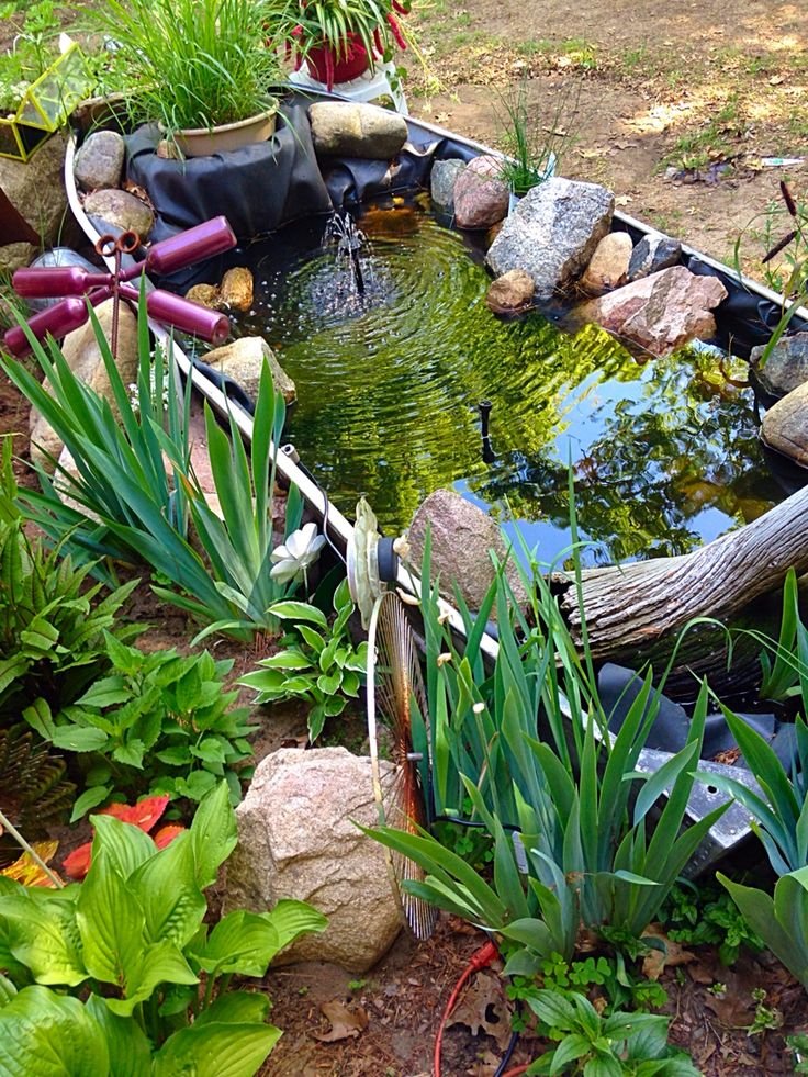 Old fishing boat turned into a lovely garden pond