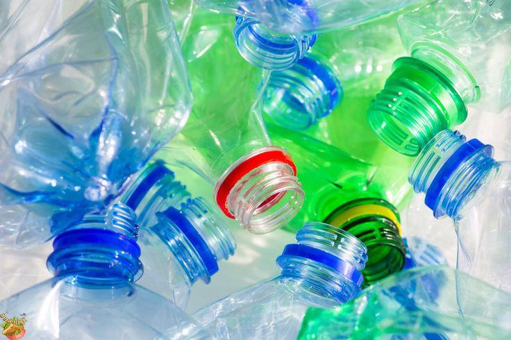 #greenelk #greenelkshop #govegan #вегетарианство #веган #веганновости  Волонтеры движения «Раздельный сбор» проведут традиционные акции по раздельному сбору мусора в выходные 5-6 ноября.   На всех акциях можно сдать: макулатуру (бумагу и картон), стекло (банки и бутылки), алюминиевые банки, пластиковые бутылки, флаконы, канистры (из-под напитков или бытовой химии, с маркировкой 01«PET» и 02«HDPE»).