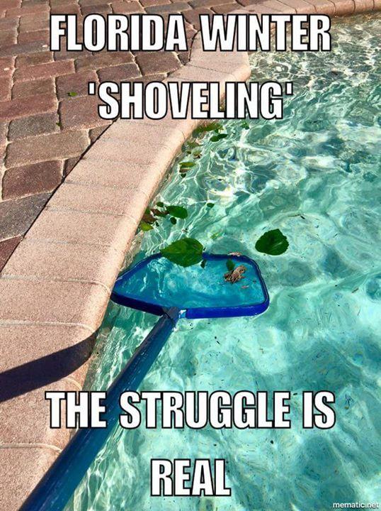 Florida Winter 'Shoveling':  The Struggle Is Real.