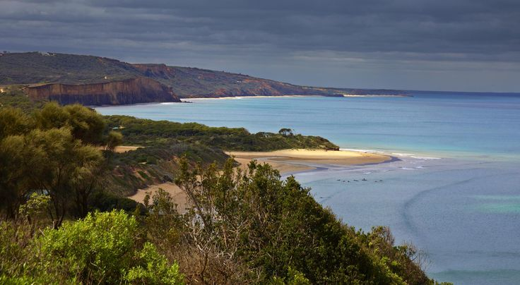 Real Estate Agents Anglesea  Properties & Land for Sale