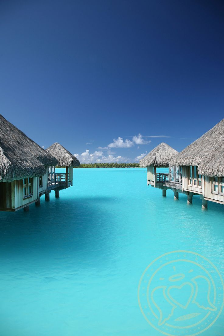 Bora Bora welcomes several celebs, honeymooners and of course, thrill-seekers.