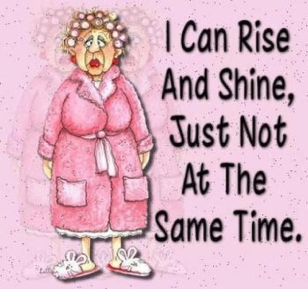Time To Rise Quotes: Rise And Shine Funny Quotes. QuotesGram