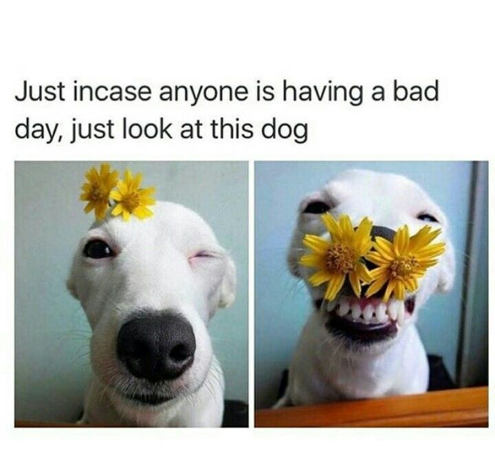 Bad Day At Work Cheer Up