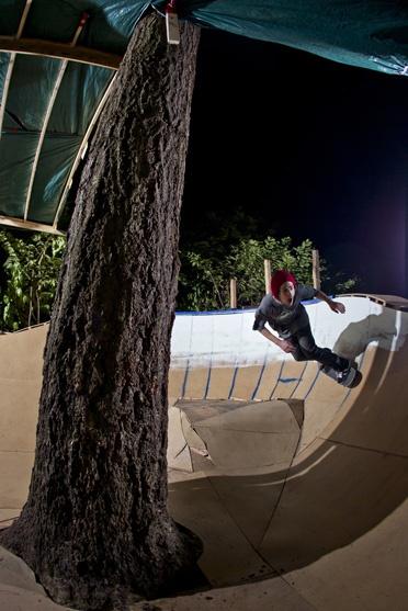 Tara Sanborn Photography  #skateboarding