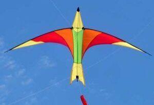 Autoridades aeronáuticas recomiendan no volar cometas en ... - RCN Radio (blog)