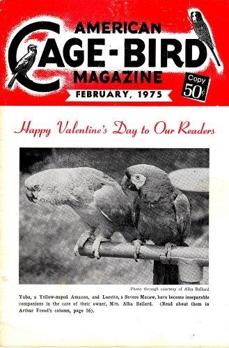322 Best Nostalgia Bird Art Amp Advertising Images On