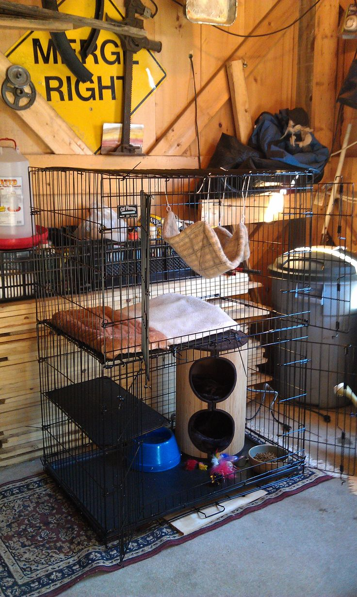 "Shelter Me Inc acclimation cage. This is a ""kitty playpen"" that cost $100 + on Amazon. It weighs 40 lbs so you need to have shipping (Amazon Prime). Feral cats like to hide so we always place a house of some kind in the cage. We are fond of the rug-covered cat houses."