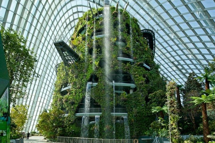 serre ecologique singapour Les serres écologiques de Singapour élues Bâtiment de l'année 2012