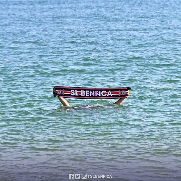 """36.6 m Gostos, 123 Comentários - Sport Lisboa e Benfica (@slbenfica) no Instagram: """" Dia Mundial dos Oceanos. #SejaOndeFor"""""""