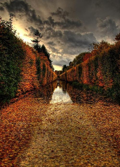 Gdańsk w Polsce. Niesamowita, polska, złota jesień. Pamiętacie jeszcze jesień? Wyjazd do Gdańska to wielkie przeżycie #gdansk #kupony #podroze
