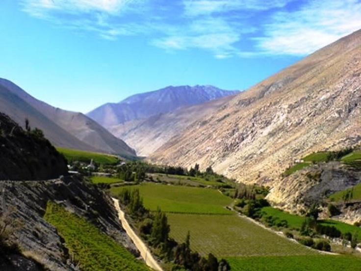 Valle del Elqui, norte de Chile