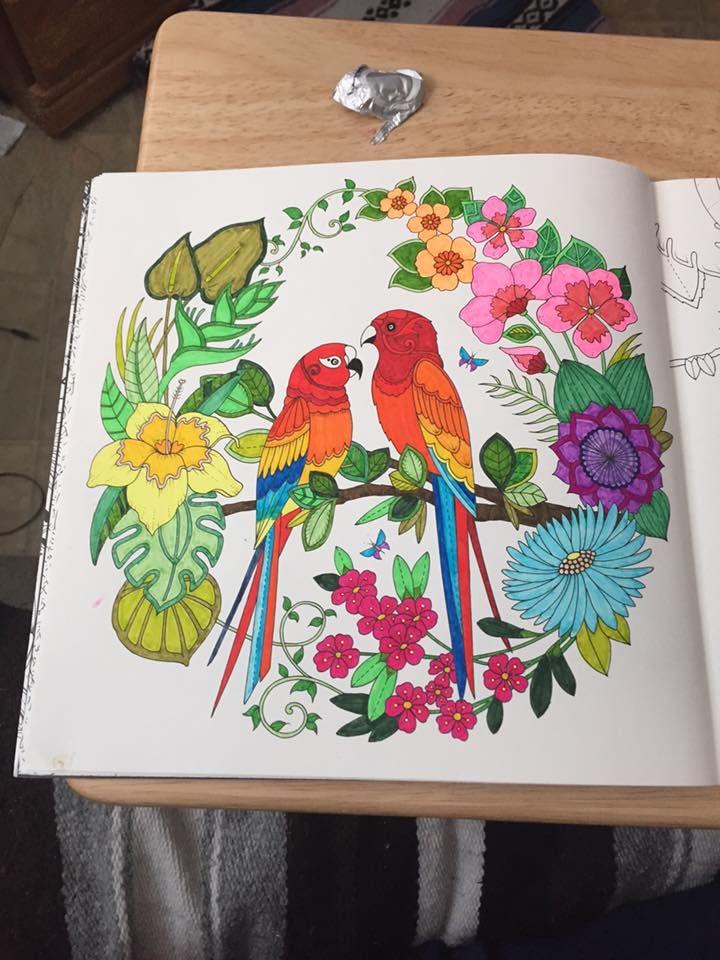 Facebook Photophpfbid Tropical BirdsTropical ParadiseParakeetsParrotsJohanna Basford Secret GardenColoring BooksAwesome