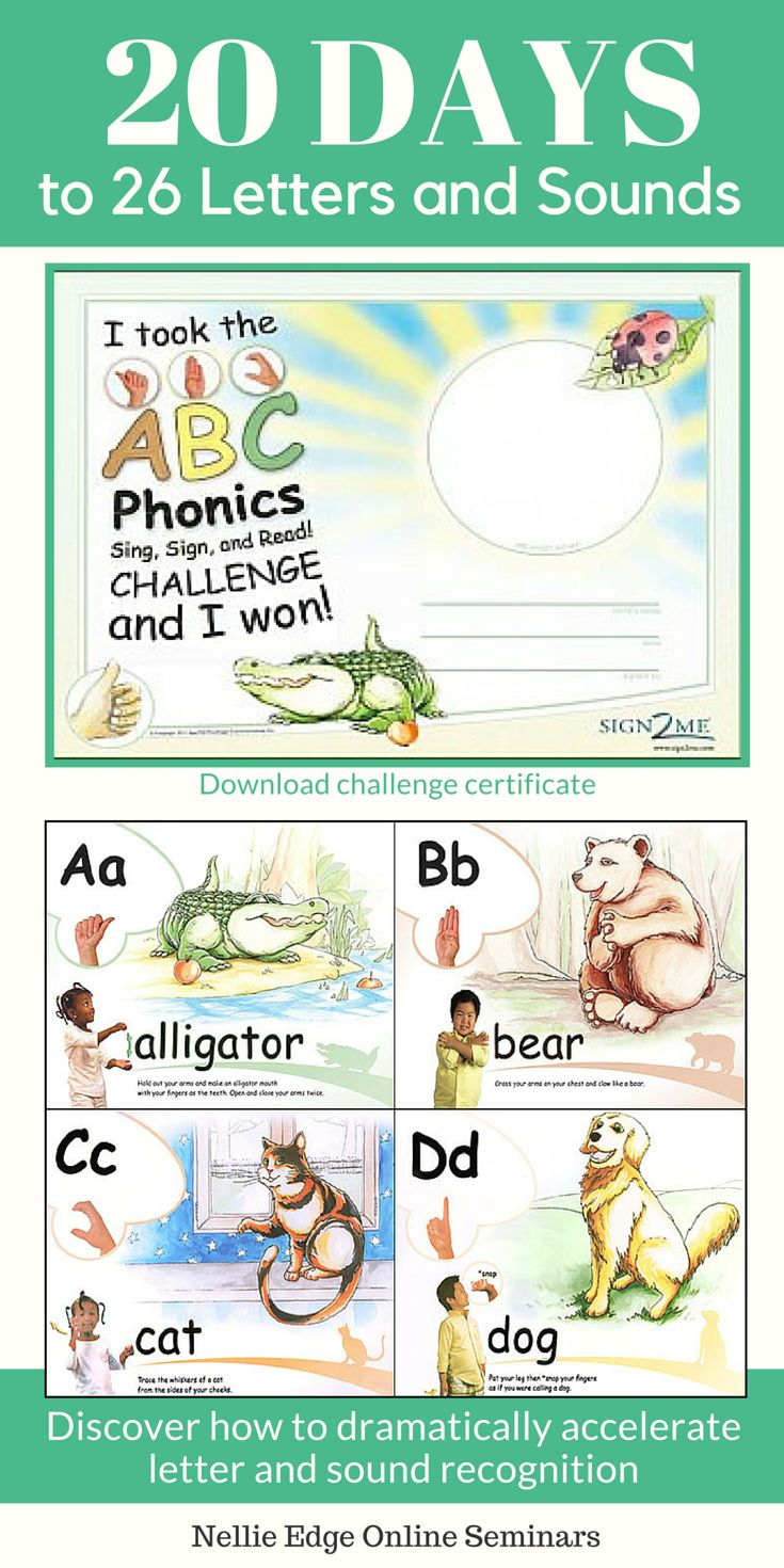 Worksheet Online Phonics Programs 17 best images about abc phonics on pinterest lower case letters 26 and sounds