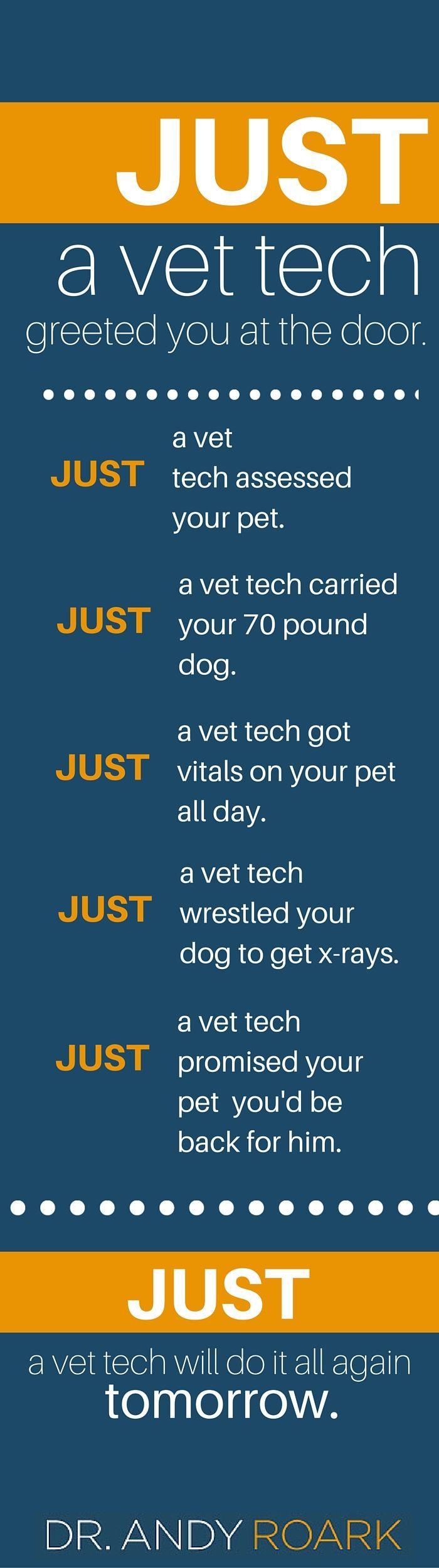 Just a vet tech, vet nurse or vet assistant? I think not!