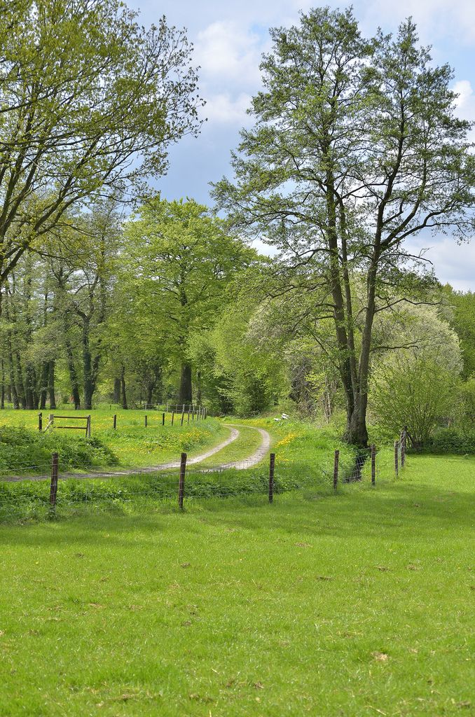 Anloo, Drenthe, Netherlands