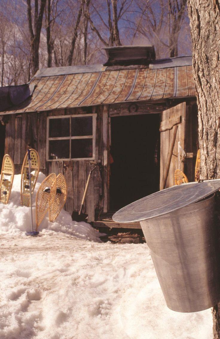 Cabane a sucre Québec Canada
