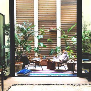 . 「&Premium」3月号に掲載されました . 特集「心地のいい部屋に、整える」にぴったりの、余白のある家 HOUSE CANVAS が紹介されました✨ . 家の中心にある「アウトドアリビング」☕️にはヴィンテージ家具と大ぶりなグリーンを壁にはファブリックやお皿を大胆に飾って、ちょっぴり大人な癒しのスペースに . 心地よく暮らすためのヒント、春に向けたお部屋のスタイリングのお手本がいっぱいぜひご覧ください . #HOUSECANVAS #ハウスキャンバス #余白のある家 #編集 #IDÉE #idee #イデー #lifelabel #ライフレーベル #hellonewfun #hello #new #fun #規格住宅 #戸建て #暮らし #ライフスタイル #シンプルモダン #interior #furniture #インテリア #雑貨 #雑誌掲載 #andpremium #アンドプレミアム #アウトドアリビング #グリーン #アートウォール #観葉植物
