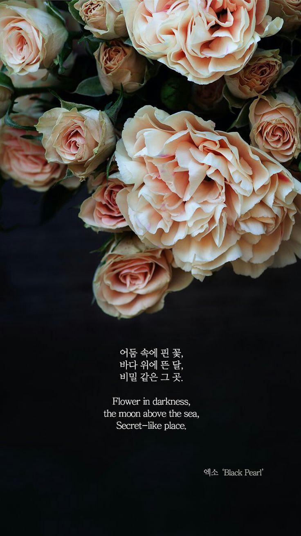 Black Pearl - EXO (엑소) Wallpaper - (By 1theK)