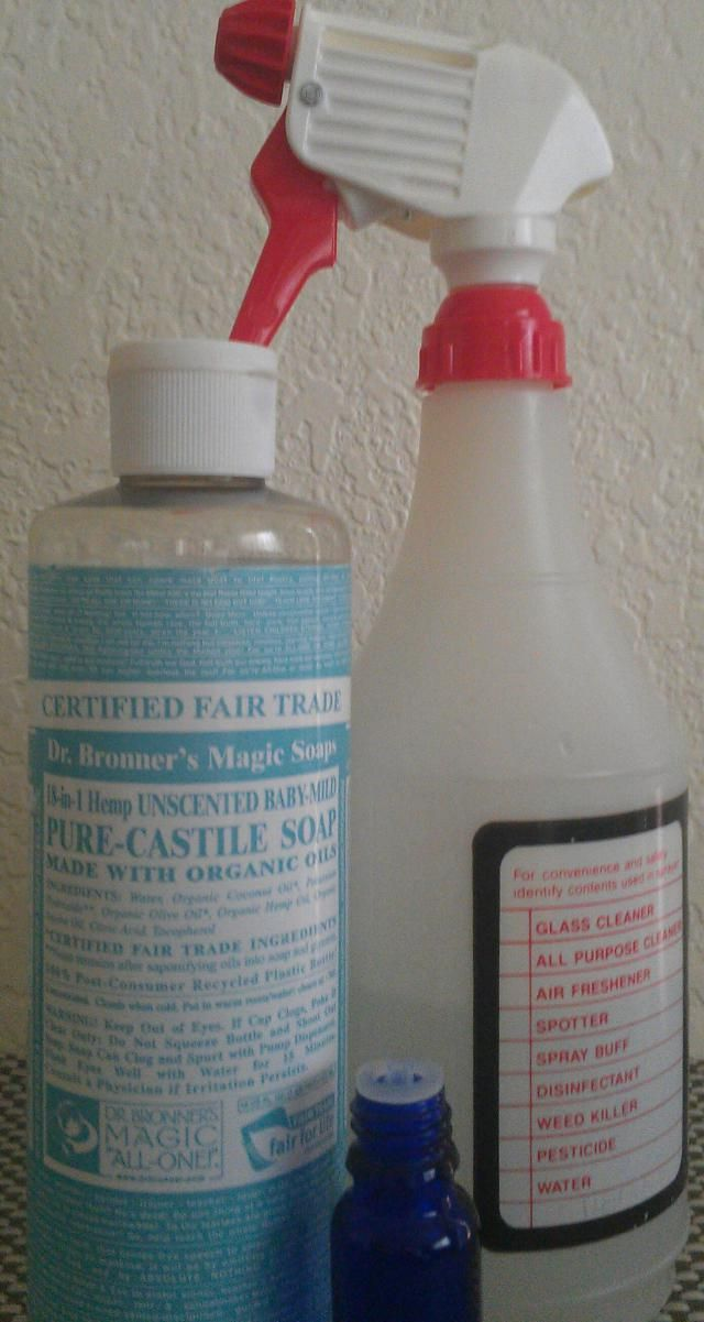 Whip up this effective green cleaning solution using castile soap to clean virtually any surface in your home from fabric to fixtures!