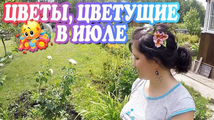 Цветы, цветущие в июле / Многолетние и однолетние цветы