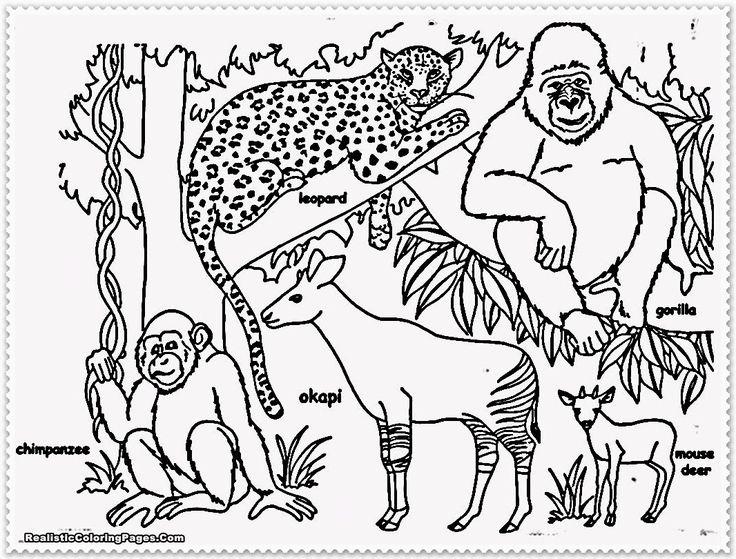 9 best PREHISTORIC ANIMALS images on Pinterest | Prehistoric animals ...