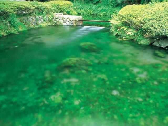 白川水源(熊本県)  Fountainhead of Shirakawa(Shirakawa-Suigen),Kumamoto,Japan