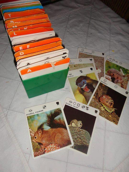 Les fiches animalières avec la boîte verte(la boîte servait à caler les livres dans la bibliothèque surtout...). EnAURME!!!