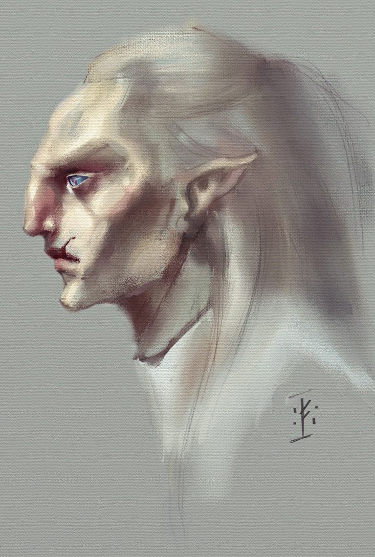 Skyrim. Snow elf by Korkuguvin