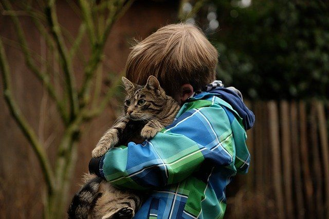 5 quotes on compassion