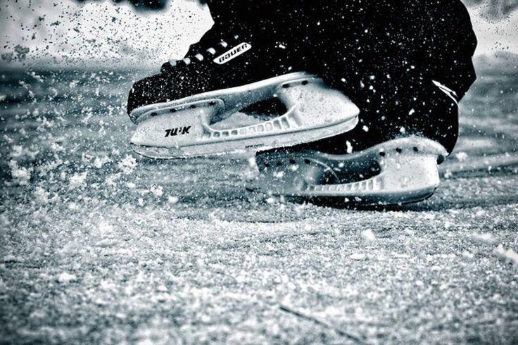 アイスホッケー|おじゃまな『スポーツフォト集』