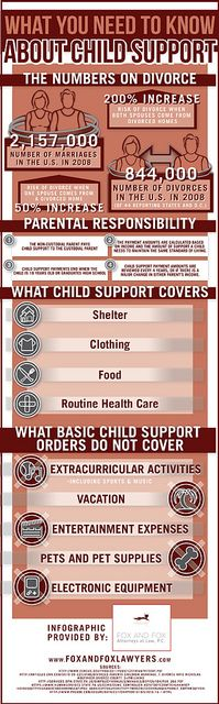 What You Need to Know About Child Support by InfographixMIX, via Flickr