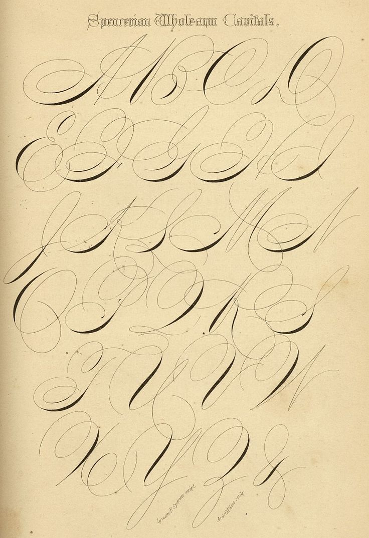 Style Spencerian Penmanship Lessons: 17 Best Images About Illuminated Letters@Alphabet
