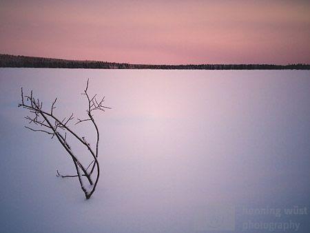 Arktischer Winter 2014