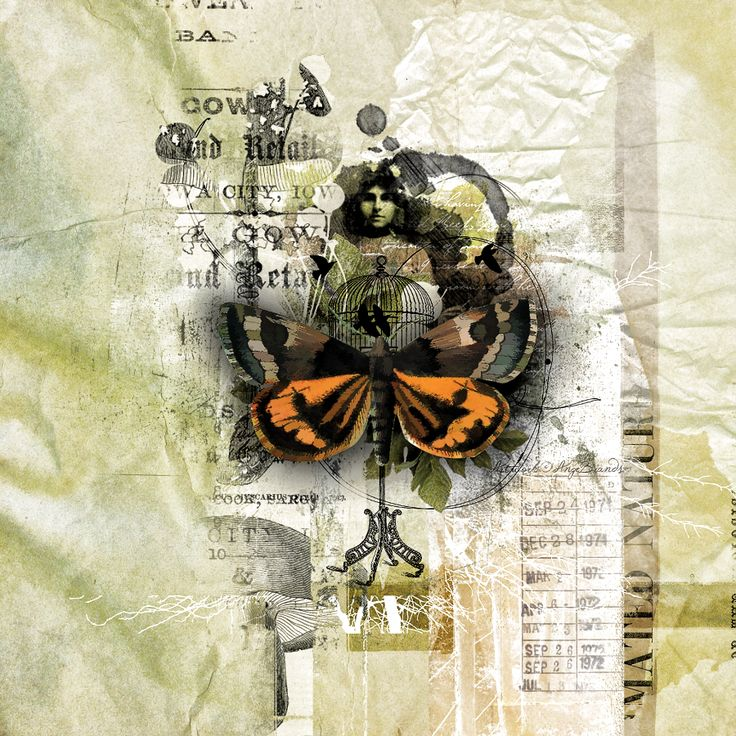 THE BUTTERFLY EFFECT... ARTWORK ©AngeBrands...All rights reserved  Credits Scrapkits Jen Maddocks Designs