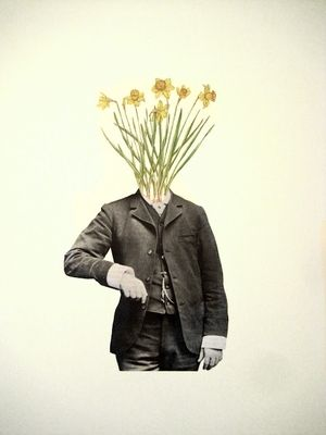 Lucy James would I rather be a sunflower 2012, collage on paper album artwork for Tinpan Orange's 'flowers'