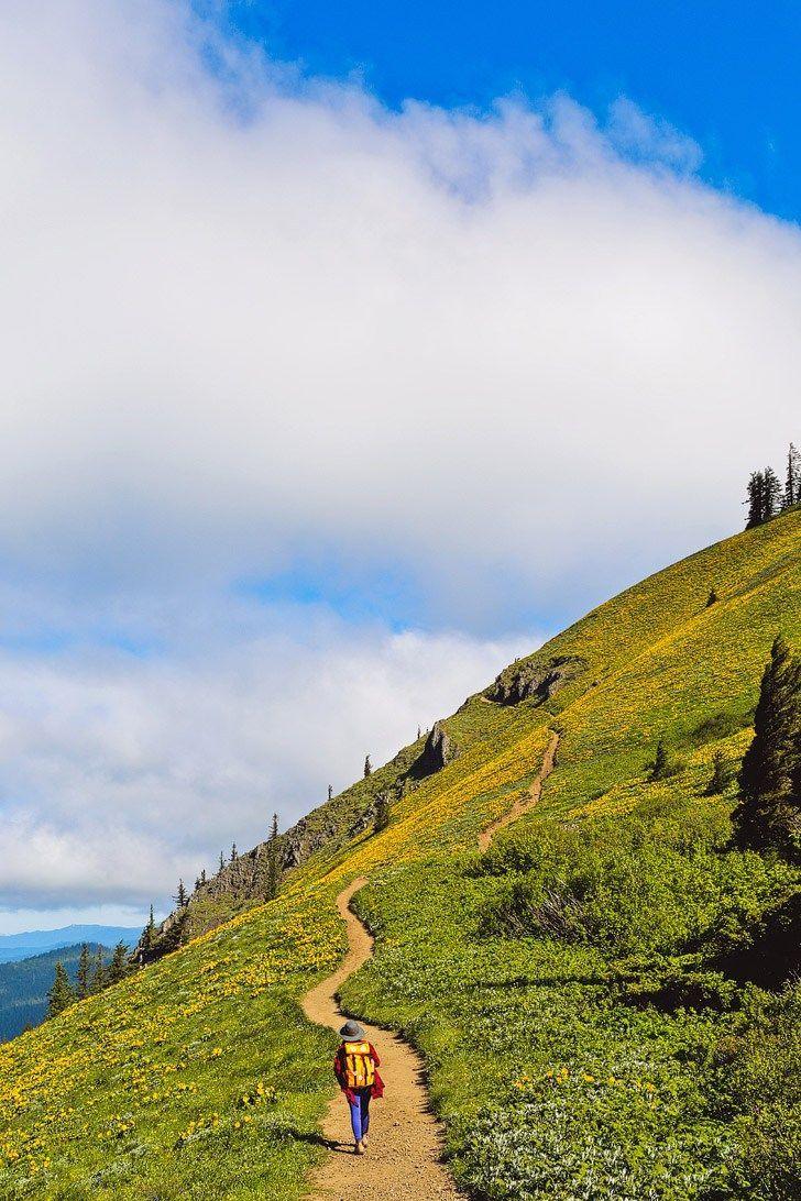 2135 Best Hiking Trails Images On Pinterest Hiking