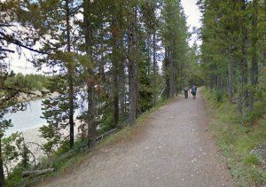 Heron Pond Swan Trail Grand Teton 4.86 miles using #iFit and your #Nordictrack #treadmill #bike #elliptical